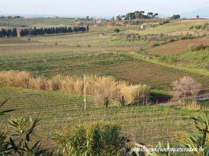 degustação vinhos roma 300x225 - Região dos Lagos, Castel Gandolfo