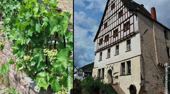 mosel estrada vinho alemanha cidades uva 672x372 - Estrada do vinho do rio Mosel