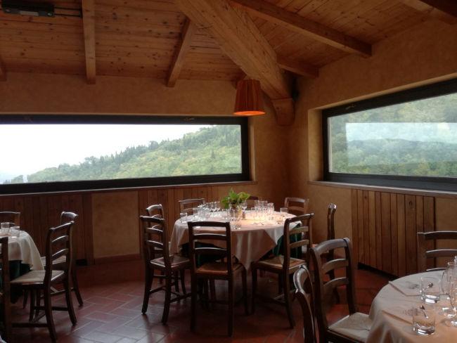 almocar vinicola chianti - Degustação exclusiva de vinhos na Toscana